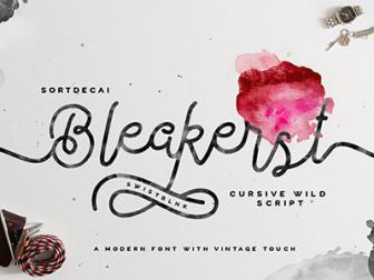 Free Font Bleakerst